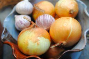 Sulfur onions garlic